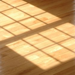 sunshine-on-wood-floor